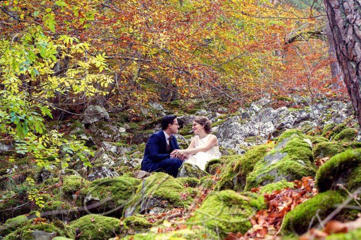 Mariage, couple, forêt, nature Le Chambon-sur-Lignon, Beaux, Haute-Loire, Auvergne