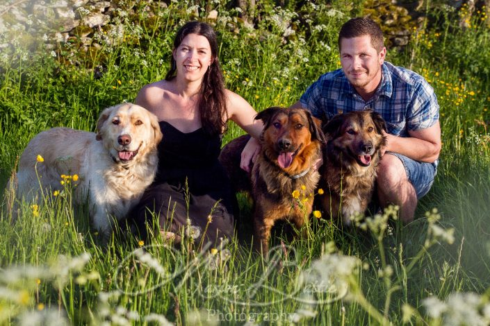 Photos animaux, chiens, esprit animal, nature, Rosières, Haute-Loire