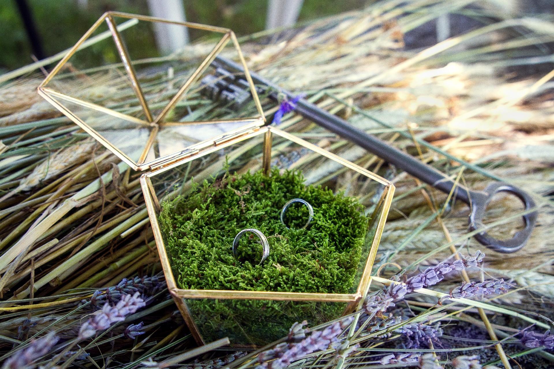 détails, alliances, décoration, mariage, nature, fleurs, Haute-Loire, Auvergne, France